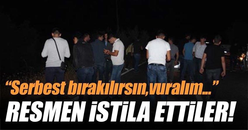 Aydın'da domuz istilası başladı