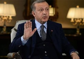 Erdoğan'dan Steinmeier'a tepki: Kendisine teessüf ediyorum
