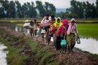 BM: Arakan dünyanın en acil mülteci krizi