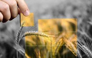 Gıda sistemi yeniden tasarlanmalı
