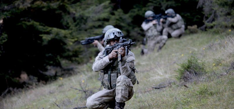 TURKISH SECURITY FORCES NEUTRALIZE 13 TERRORISTS IN EASTERN TURKEY