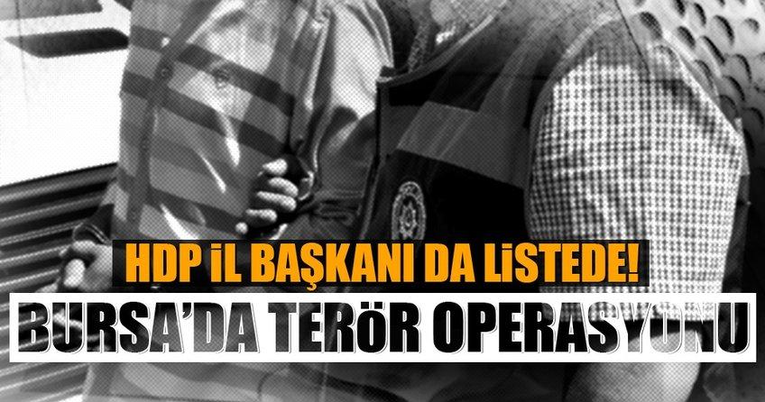 Bursa'da terör operasyonu! HDP İl Başkanı da...