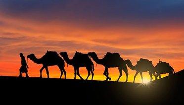 Peygamberimizi Hayrete Düşüren Sahâbî