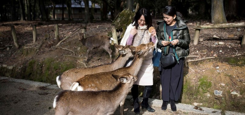 9 DEER DIE AFTER EATING PLASTIC BAGS IN JAPANESE PARK