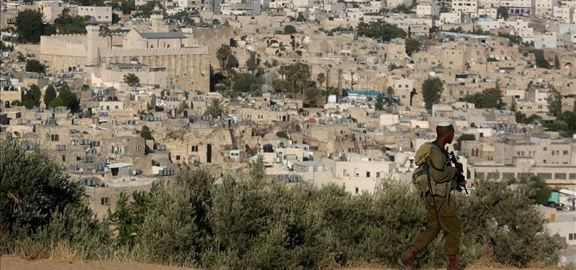 WEST BANK JEWISH SETTLERS UPROOT PALESTINIAN OLIVE TREES