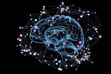 Beyin hakkında şaşırtıcı bilgiler