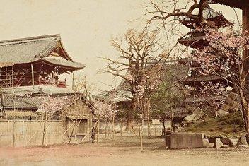 Sultan Abdülhamid'in arşivinden Japonya fotoğrafları