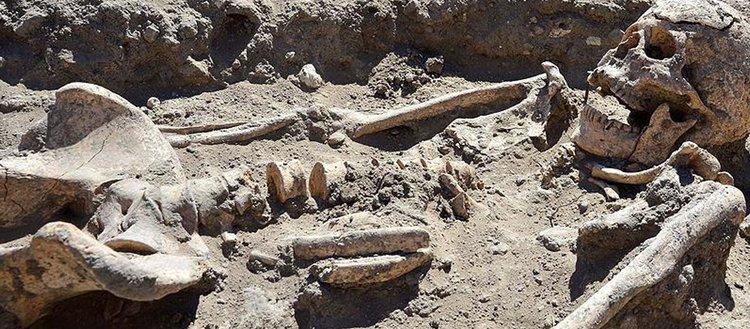 Troya Antik Kenti'nde yeni keşif