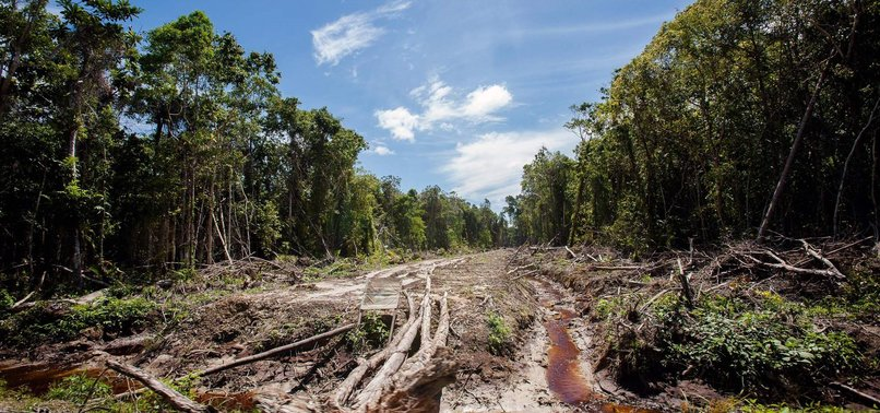 27 DEAD IN FLOODS, LANDSLIDES ON INDONESIAS SUMATRA ISLAND