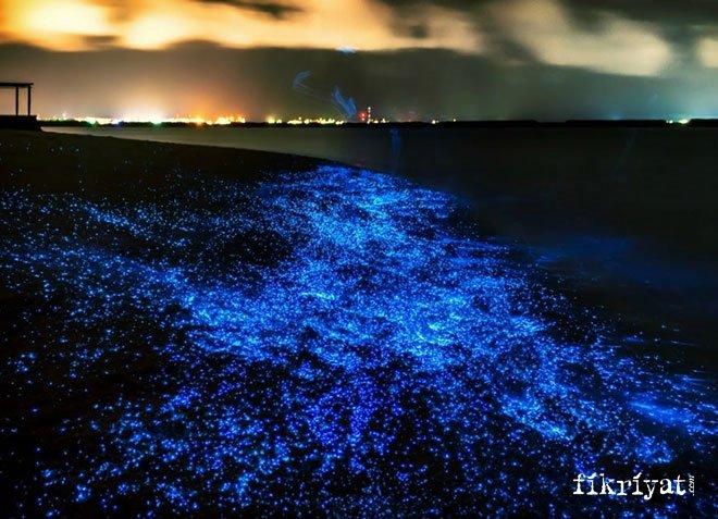 Biyoyansıma, Maldivler