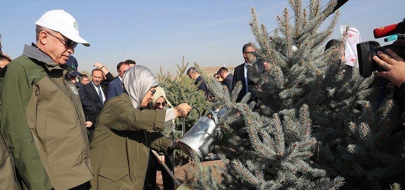 PUBLIC PLANTING 11M TREES FOR GREENER TURKEY: PRESIDENT ERDOĞAN