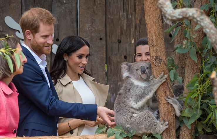 Kensington Sarayı'nın Meghan Markle'ın hamile olduğunu duyurması üzerine, Prens Harry  ve Meghan Markle'a Avustralya ziyaretlerinde hediye yağdı.