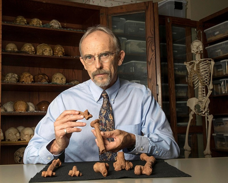 Paleoanthropologist John Kappelman is seen with 3D printouts of Lucyu2019s skeleton in this image from the University of Texas at Austin, U.S.  (Reuters Photo)