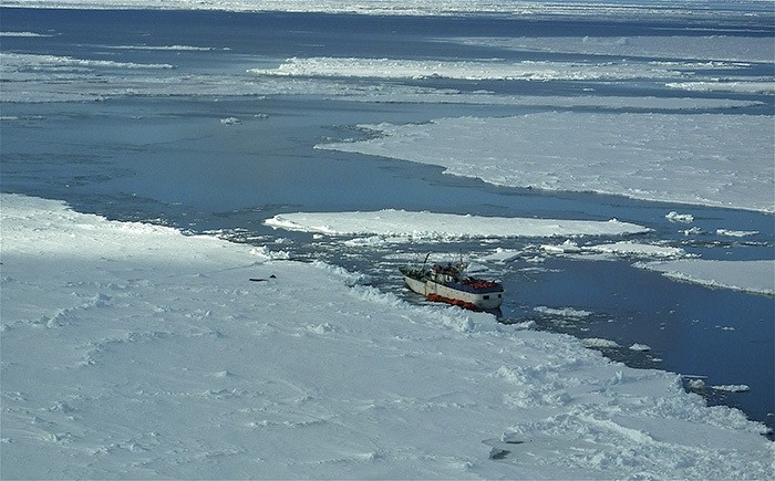 The Russian fishing boat Sparta lies stranded in Ross Bay in Antarctica about 2,000 nautical miles (3,700 km) southeast of New Zealand in this handout picture taken on December 17, 2011. (Reuters Photo)