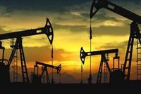 Petrol taxes drop globally despite climate change