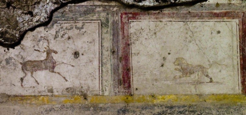 STREET OF BALCONIES DISCOVERED IN ITALYS POMPEII
