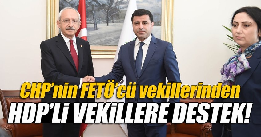 CHP'nin FETÖ'cülerinden HDP'ye destek!