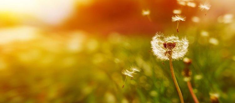 Tebessüm etmek en mutlu edici davranışlardandır'