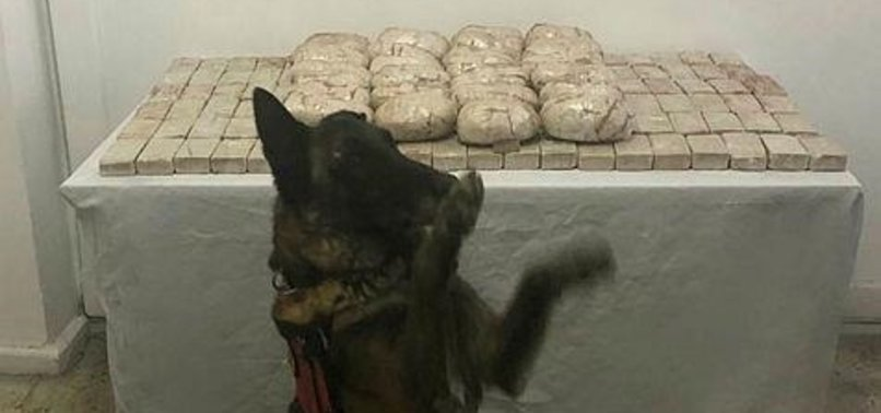 OVER 200 KG OF HEROIN SEIZED IN TURKEY
