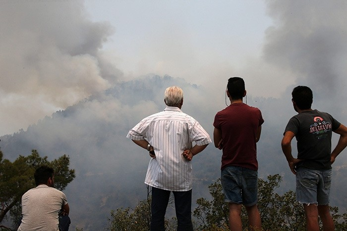 People watch the destruction by the fire in the Troodos mountain area of Cyprus, 21 June 2016. (EPA Photo)