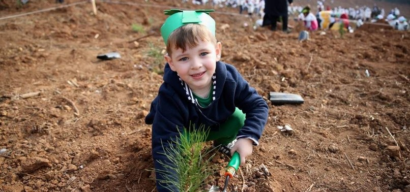 TURKEY AIMS TO PLANT 82 MILLION SAPLINGS BY NOVEMBER