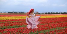 Tulip field in Turkey social media hit, draws visitors