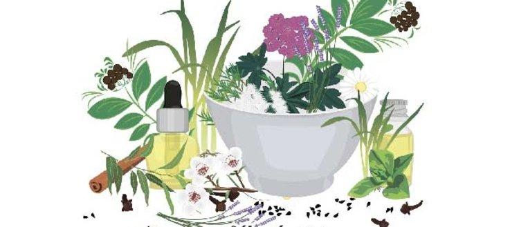 Geleneksel tıpta kullanılan 10 bitki