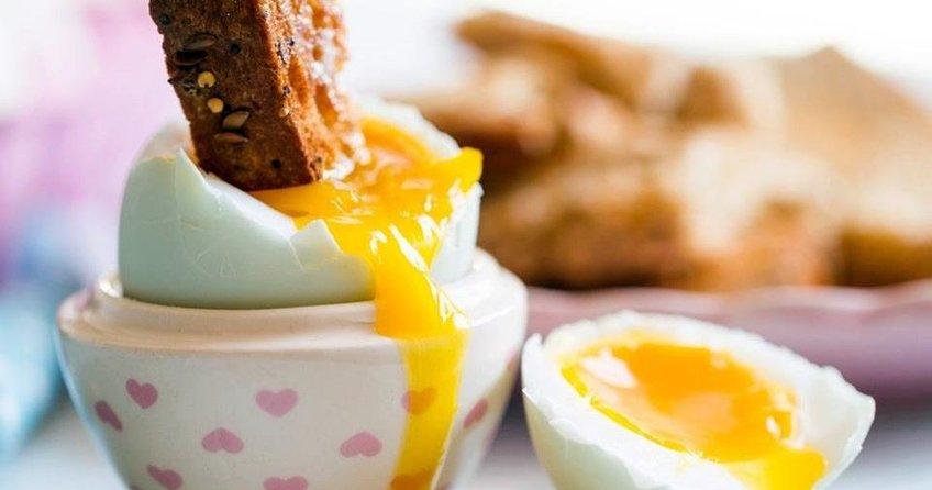 Almanya'da zehirli yumurta alarmı