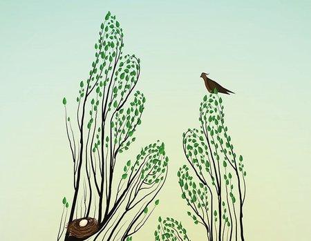 Doğayı bencilce savunmak: Yeni bir sözleşme mümkün müdür?
