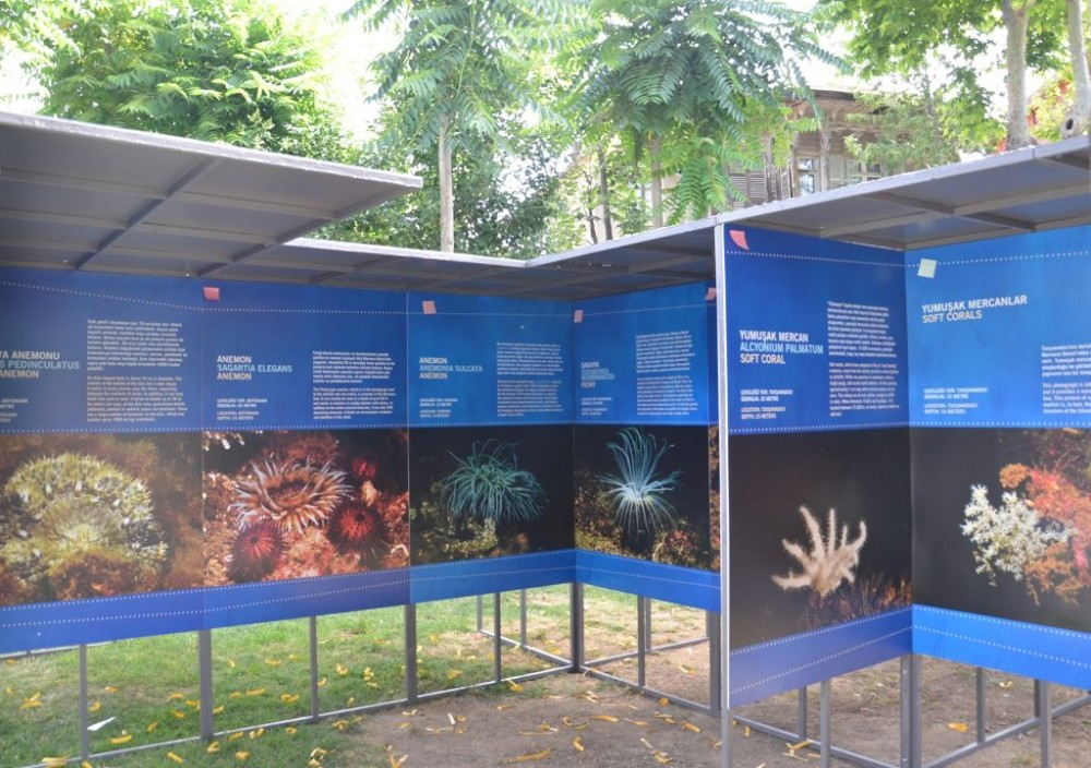 Photos by underwater photographer Ateu015f Evirgen and video from Seru00e7o Eku015fiyan reveal what is happening in the sea and to underwater life, vividly and dramatically. The exhibition will be open for a year.