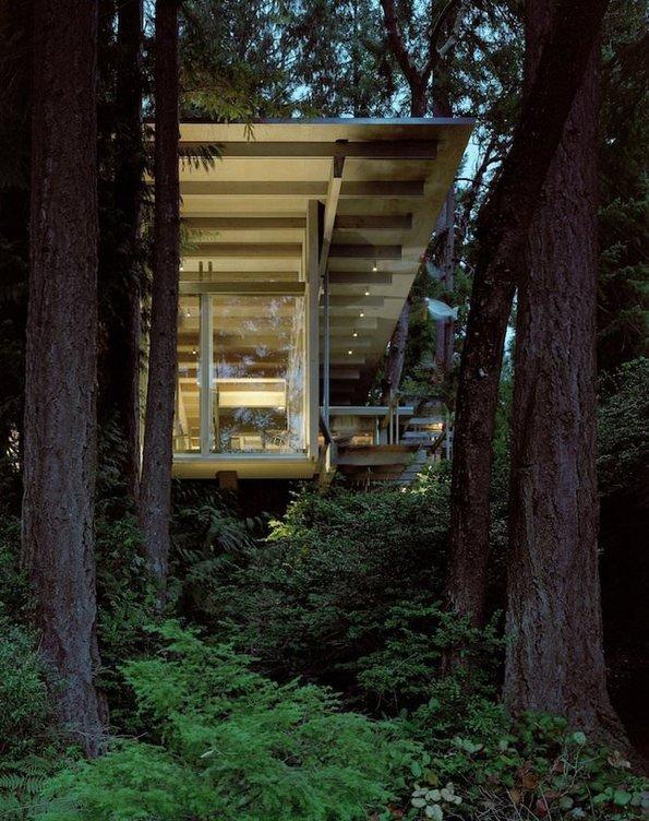 Mimarının tam 60 yıldır üstünde çalıştığı muhteşem orman evi