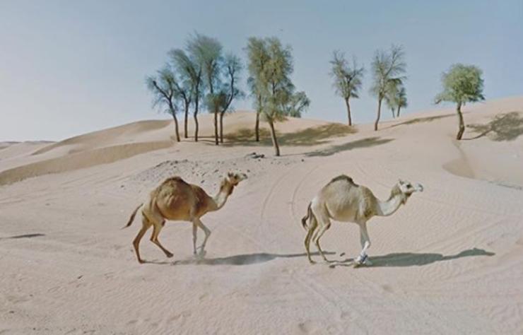Açık alan korkusu olan Jacqui Kenny'nin Google Street View'la çektiği fotoğraflar sayesinde Instagram'da 86 bin takipçisi var.