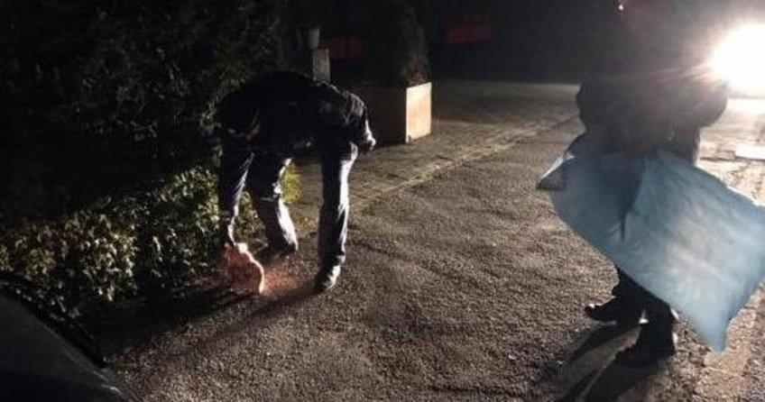 Almanyada cami önüne domuz başı bırakıldı