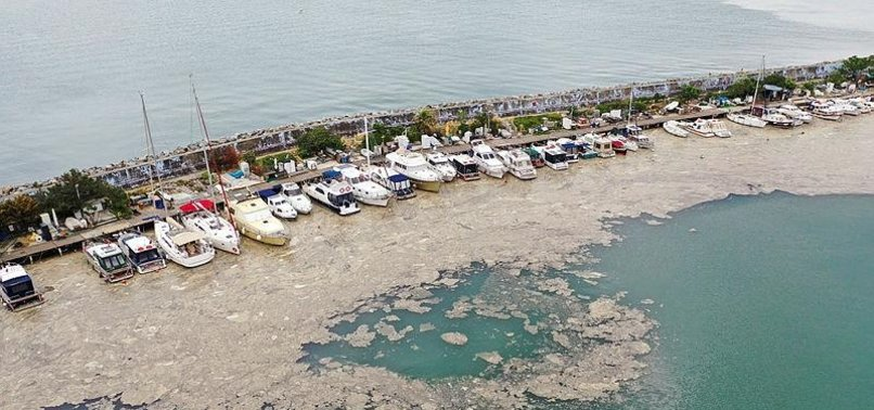 TURKEY UNVEILS ACTION PLAN TO COMPLETELY CLEAN MUCILAGE IN SEA OF MARMARA