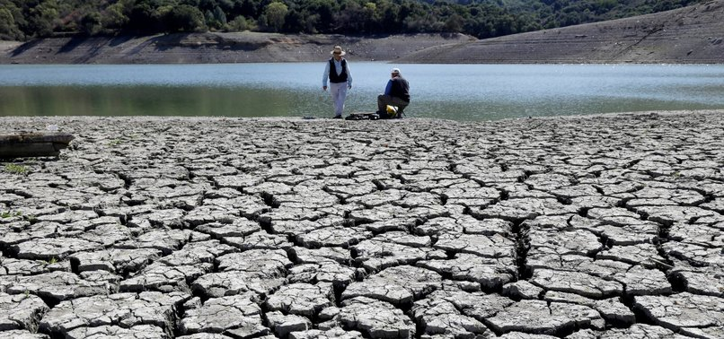 2010S SET TO BE HOTTEST DECADE IN HISTORY: UN