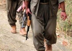6 terörist güvenlik güçlerine teslim oldu
