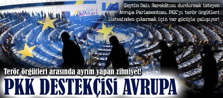 PKK destekçisi Avrupa!