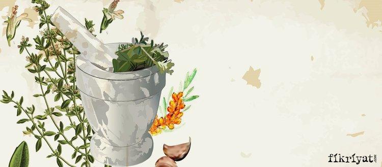 Tedavi amaçlı kullanılan 20 şifalı bitki