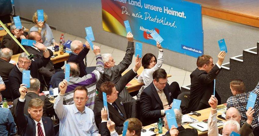 Alman faşistler iktidara yürüyor