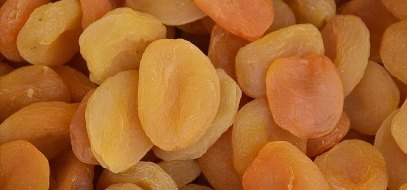 TURKEY EXPORTS DRIED APRICOTS TO 105 COUNTRIES