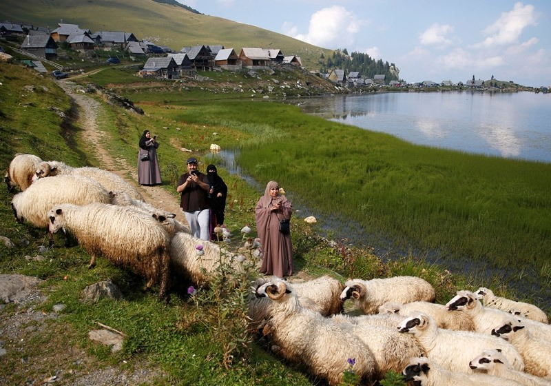 Tourists from the Middle East take pictures of sheep on the Prokosko Lake near Fojnica, Bosnia and Herzegovina, August 20, 2016.  REUTERS Photo