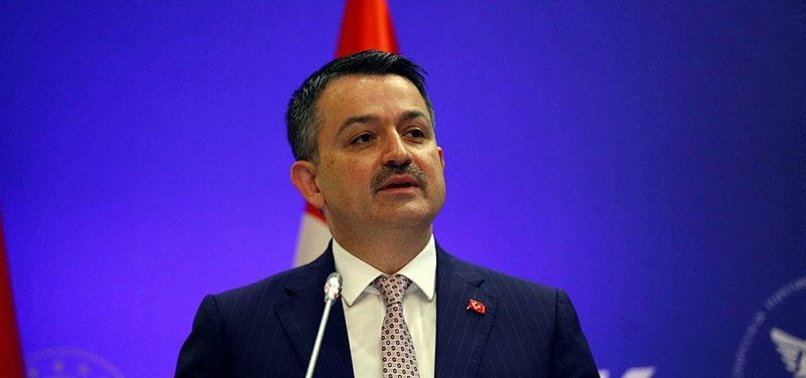 TURKEY READY TO CARRY OUT PROJECTS IN BELARUS: MINISTER