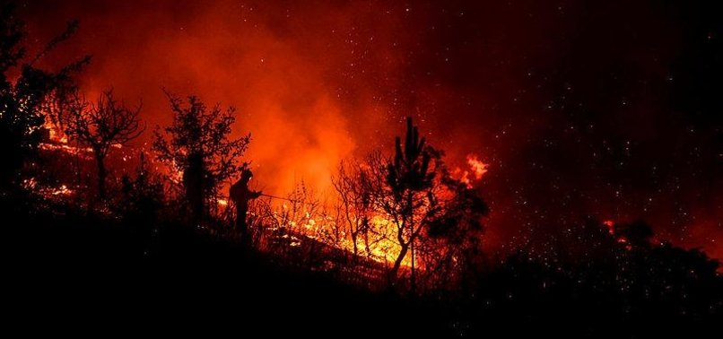 1,000 FIREFIGHTERS BATTLE WILDFIRES IN CENTRAL PORTUGAL