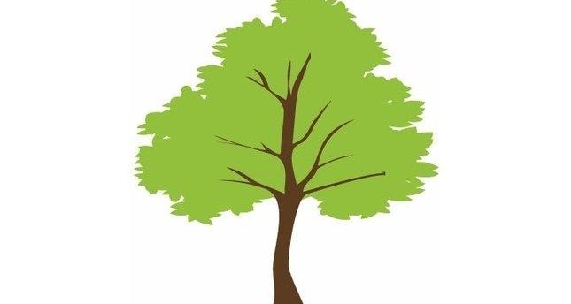 Herkese 7 ağaç