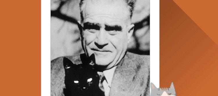 Yazar ve şairlerimizin en yakın dostu kediler