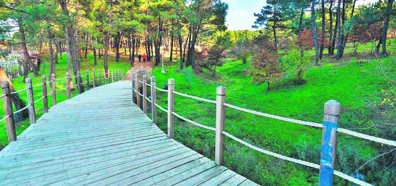 AK PARTYS NEW CITY PARK PROJECTS PAVE WAY FOR GREENER TURKEY