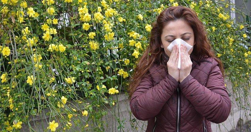 Türkiyede 4 kişiden biri alerjik