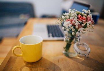 Ofisinizdeki canlı çiçekler enerjinizi yeniliyor!
