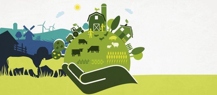 İslam uygarlığında gerçekleştirilen tarım devrimi