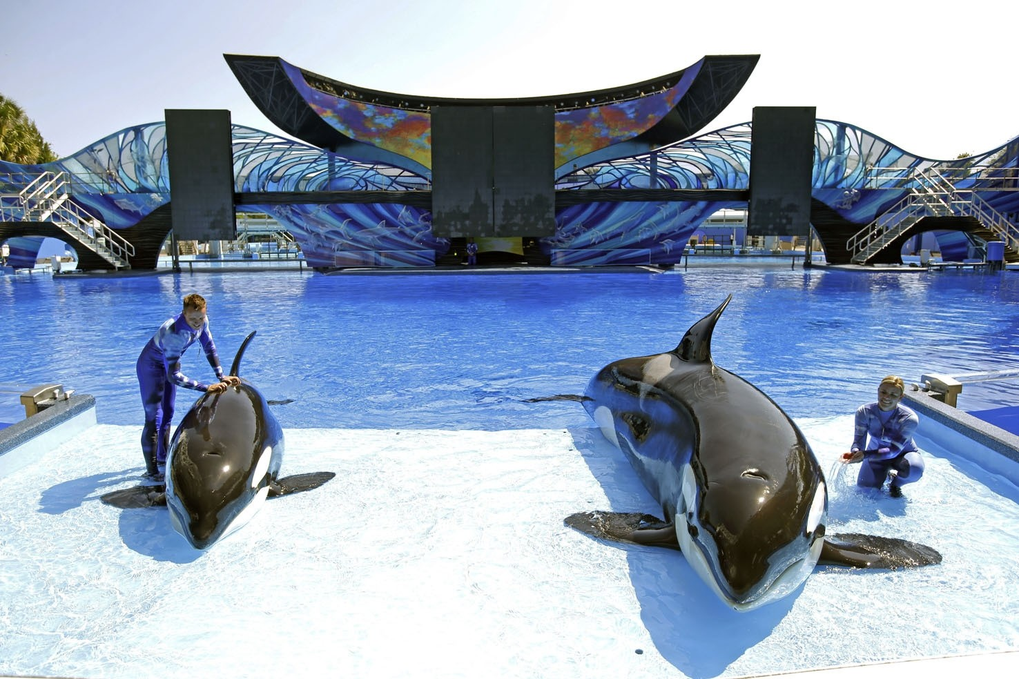 The theme park in Abu Dhabi will be the first SeaWorld park outside the United States and without orcas.